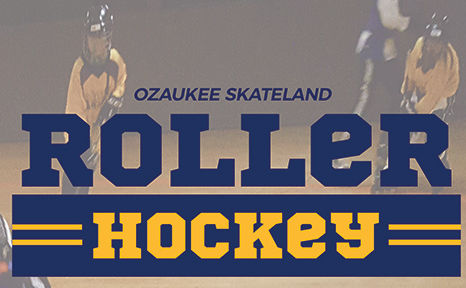 Winter 2018 Roller Hockey